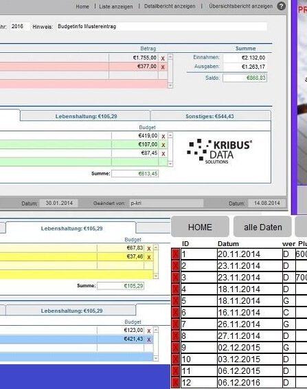 Finanz- Bürosoftware